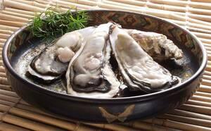宮城 女川発 新鮮 極上1級品 今から旬だよ!でかい殻付きカキ20kg ひえひえクール代送料込み 牡蠣 かき でっかいよ 12900円即決