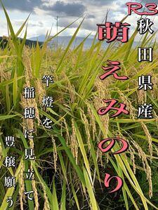 農家直送!令和3年 秋田県産【萌えみのり】玄米24kg 減農薬 大粒 美味い 精米無料!〈新米〉できました!