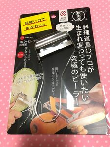 飯田屋 エバーピーラー 皮むき器替刃式 ピーラー ステンレス 日本製 右きき用