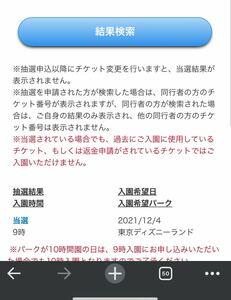 12月4日(土) 東京ディズニーランド チケット 大人2枚 ワンデー 1dayパスポート ディズニーリゾート 12/4 土曜日