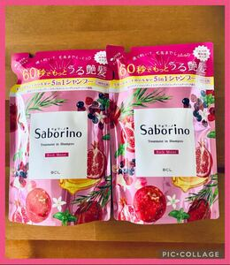 【2袋セット】サボリーノ トリートメントインシャンプー リッチモイスト410ml