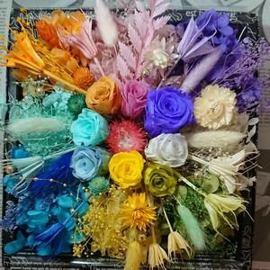 大箱ハーバリウム花材 プリザーブドフラワー 8カラー ハーバリウム花材