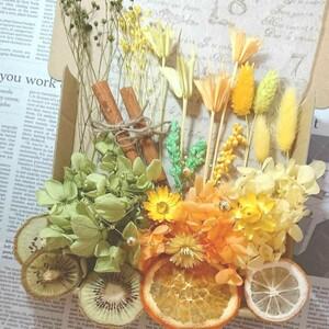 ハーバリウム花材 プリザーブドフラワー イエローグリーンオレンジ フルーツ
