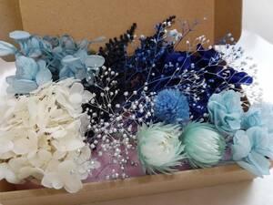 herbarium material for flower arrangement ( blue group small flower various assortment ) set