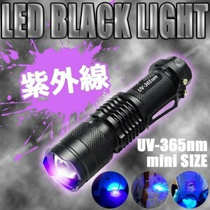 ブラックライト LED 懐中電灯UV 紫外線 ネイル