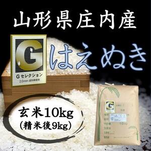 ◇Gセレクション!新米!令和3年産!山形庄内産はえぬき玄米10kg(白米9kg)送料無料