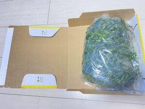 宅急便コンパクトの箱めいっぱい詰め込みます 無農薬アナカリスオオカナダモ メダカ水槽アクアリウム餌金魚ビオトープ ザリガニ水草 エサ