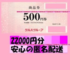 22000円分●ツルハホールディングス 株主優待 商品券有効期限:2022年2月28日