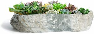 ホワイト Large T4U 植木鉢 多肉植物鉢 サボテン鉢 横長24cm プランター 底穴付き 観葉植物適用 陶器製 グレー