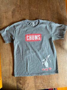 CHUMS 半袖Tシャツ Mサイズ チャコールグレー 古着