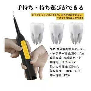 口腔洗浄器  電動歯ブラシ USB充電式 IPX6防水