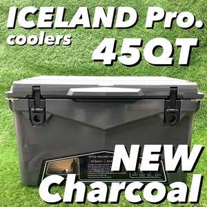 別注カラー アイスランドクーラーボックス 45QT チャコール クリアランスセール 限定カラー
