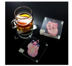 S-333 【6枚セット♪】3D 心臓スライス 標本コースター アクリルガラス 10cm×10cm