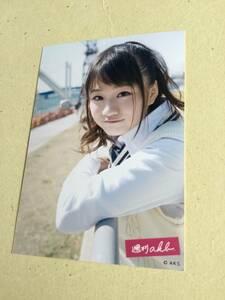 AKB48 週刊AKB DVD封入写真 島田 晴香 他にも出品中 説明文必読