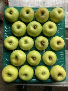 ★訳ありリンゴ(小玉)★ 青森県産 「王林」 小玉 約10kg~11kg強 41~46個くらい 2段詰め 数量限定④