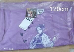 限定価格☆ 新品未開封 鬼滅の刃 半袖Tシャツ 120cm  胡蝶しのぶ