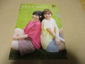Hyuga city slope 46. wistaria capital .&..... clear file & poster EX large .