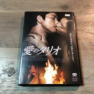 DVD 愛のタリオ レンタル使用品 ケース新品交換済 チョン・ウソン 韓国映画 韓流