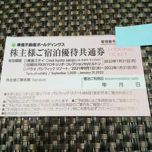 ◆東急不動産 株主様ご宿泊優待共通券 有効期限2022年1月31日 東急ステイ等