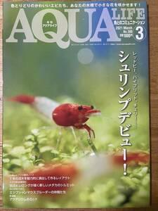 アクアライフ AQUA LIFE 2021年 3月 シュリンプデビュー! - スラウェシ シュリンプ レッドビー ハイブリッド チェリー