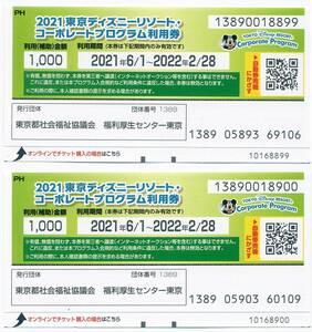 2021東京ディズニーランドリゾート・コーポレートプログラム利用券。