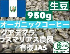 生豆 グアテマラ オーガニック ラスマリアス農園  950g *即購入可