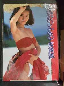 AV女優 星野ひかる 写真集 スコラシリーズ昭和最後~平成初期活躍 スレンダー美少女系