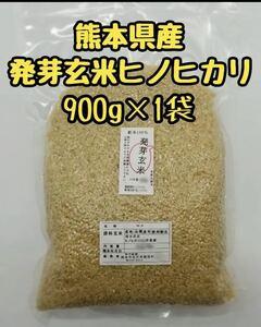熊本県産 令和3年新米100% 発芽玄米 900g ヒノヒカリ