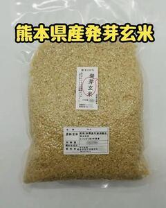 熊本県産 令和3年新米100% 発芽玄米 2kg ヒノヒカリ