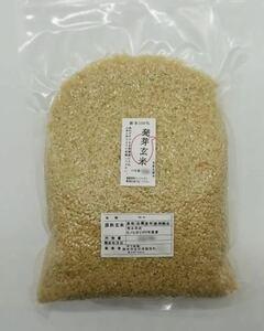 熊本県産 令和3年新米100% 発芽玄米 2袋 れんげ米 6kg