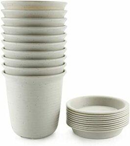 NO.3 Large T4U 15CM プラスチック製 植木鉢 プランター 多肉植物 サボテン鉢 受け皿付き ホワイト 10点