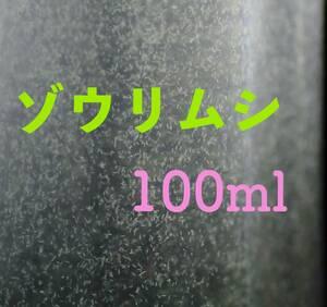 ゾウリムシ 100ml メダカ 針子の餌 【KASUMIめだか】