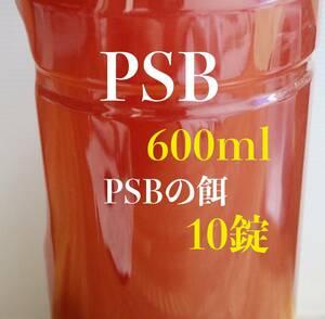 PSB 600ml メダカ 魚 水質浄化 光合成細菌 アクアリウム 水槽【KASUMIめだか】