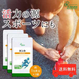 【リプサ公式】 カンカ 約1か月分×3袋 C-196-3 サプリメント サプリ 健康食品 活力 送料無料