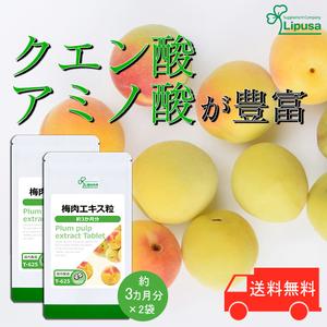 【リプサ公式】 梅肉エキス粒 約3か月分×2袋 T-625-2 サプリメント サプリ 健康食品 送料無料
