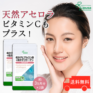 【リプサ公式】 低分子ヒアルロン酸+低分子コラーゲン 約3か月分×2袋 C-239-2 サプリメント サプリ 健康食品 美容 送料無料