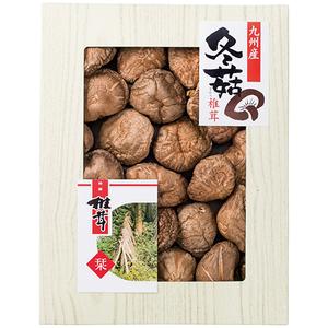 九州産原木どんこ椎茸SPD-50 2671-058(l-4962468018286)