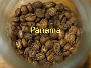 コーヒー豆 パナマ エルバンビート スペシャルティ Rabbit village
