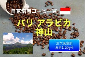 (注文後焙煎)バリ アラビカ 神山300g+おすすめの豆20g
