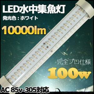 超強力 白色 LED水中集魚灯 100w 85v-305v対応 ホワイト 10000lm 集魚灯 水中ライト フィッシング
