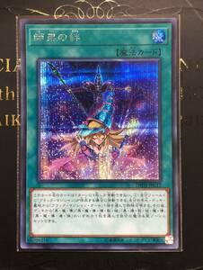 日版 師弟の絆 シークレット 1枚  20TH-JPC12 Secret  個数:2
