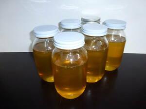 熊本(阿蘇)産 天然はちみつ 6kg(1kg×6本) アカシア系百花蜜 天然ハチミツ 天然蜂蜜 蜂蜜 天然