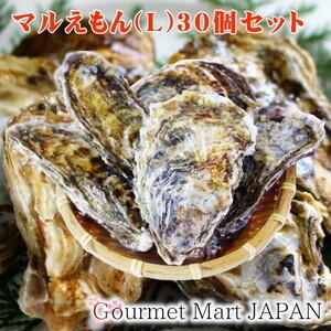 【グルメマートJAPAN】産地直送 北海道厚岸産 殻付き生牡蠣 マルえもん [L(90g~120g)] 30個セット