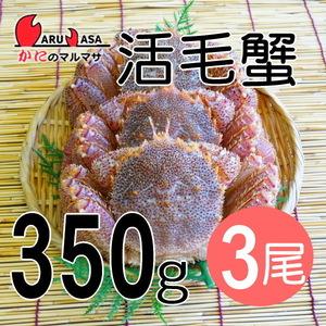 【かにのマルマサ】活蟹専門店 北海道産 活毛ガニ350g 3尾セット