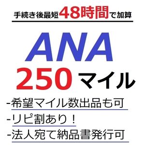 ANA250マイル加算 (最短48時間)●国内線や国際線特典航空券予約発券や施設利用に足りないとき/ANAマイル/ANAマイレージクラブ/優