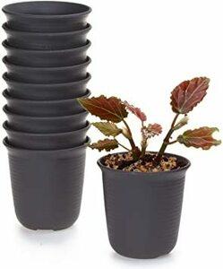 No.2 XXS T4U 6.5CM プラスチックミ二植木鉢 ラウンド 多肉植物 サボテン鉢 フラワーポット プランター容器 ダ