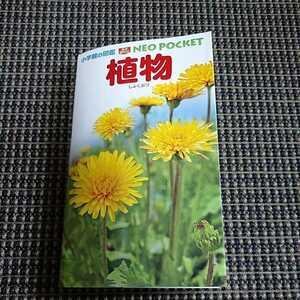 小学館の図鑑NEO Pocket 植物図鑑 ミニサイズ 携帯サイズ 中古品 1冊