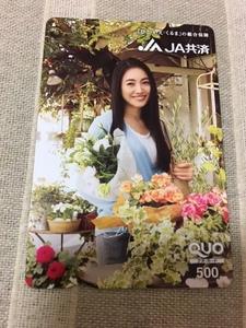 仲間由紀恵 JA共済  クオカード QUO 未使用 非売品 500
