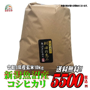 送料無料!新米 令和3年産 新潟 魚沼 コシヒカリ 玄米 10kg