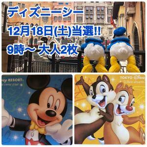 12月18日(土)当選品ディズニー シー ペアチケット 引換券 東京ディズニーリゾート 1デーパスポート